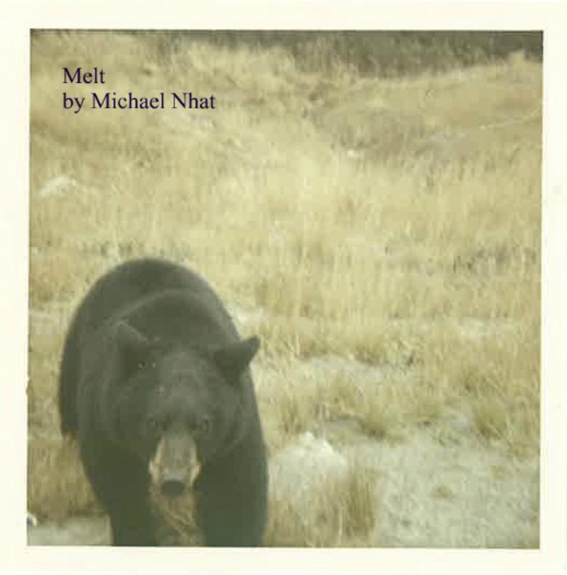 melt_album_cover_801_812